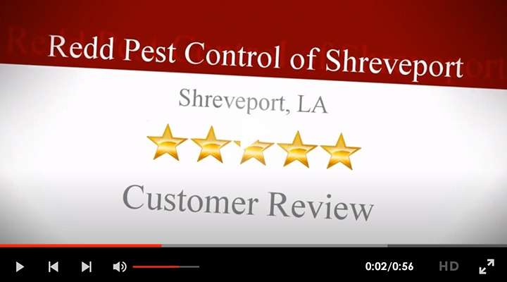 Redd Pest Control Rep Video